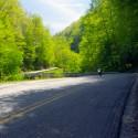 Wayah Road