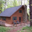 Cabin Dogwood