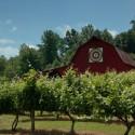 South Creek Barn in McDowell County