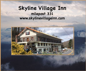 Skyline Village Inn